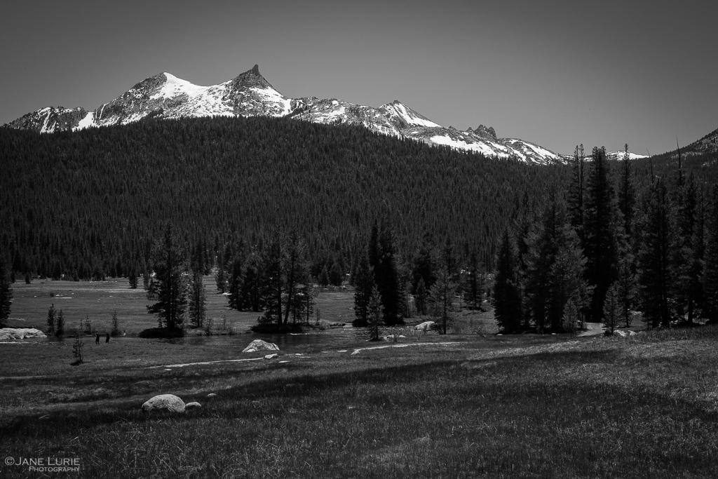 Landscape, Photography, Fujifilm X-T2, National Park, Nature, Environment, John Muir, Yosemite, California, Preservation, Black and White