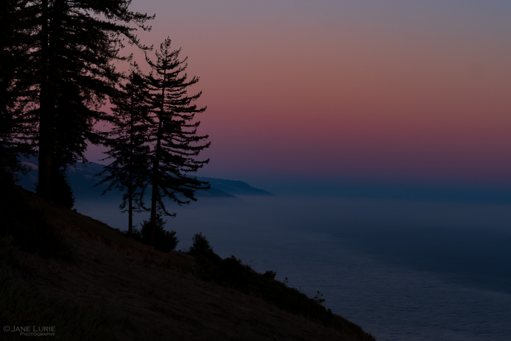 Big Sur: The Magic of Light