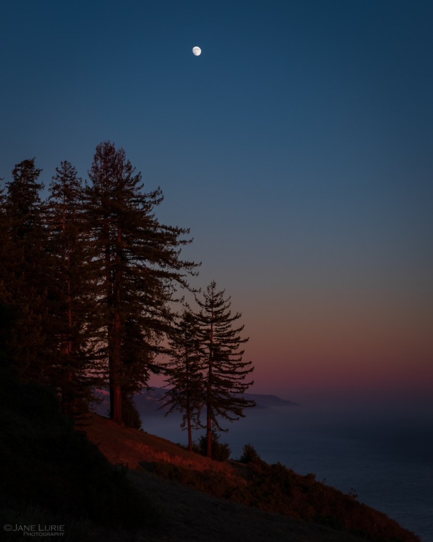 Landscapes, Photography, California, Big Sur, Fog, Nature, Environment, Fujifilm X-T2