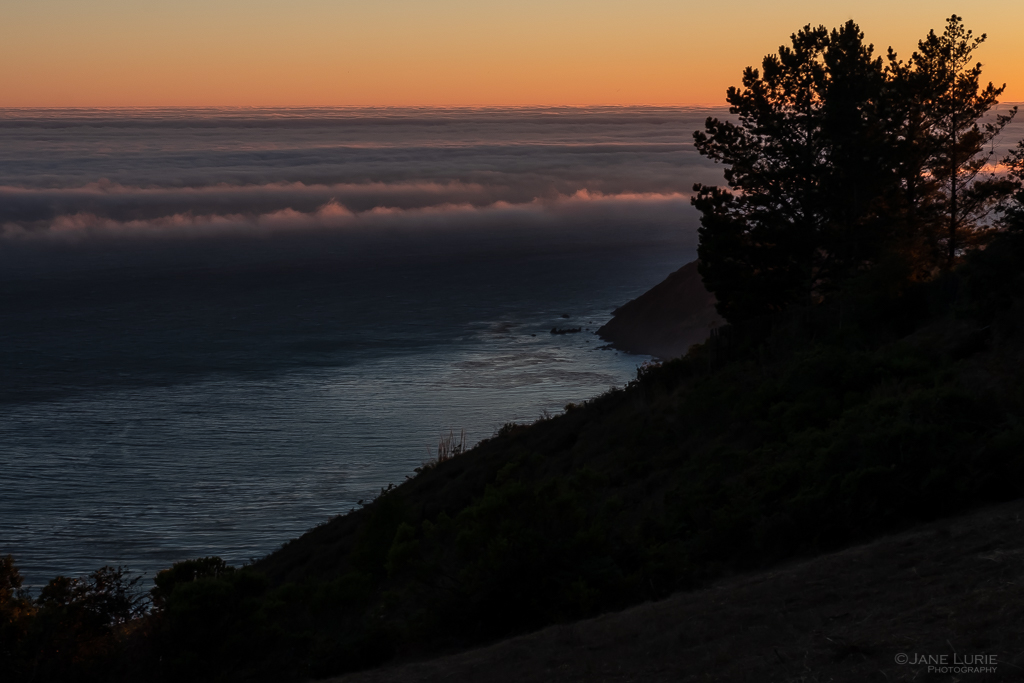 Landscapes, Photography, California, Big Sur, Fog, Nature, Environment, Fujifilm X-T2
