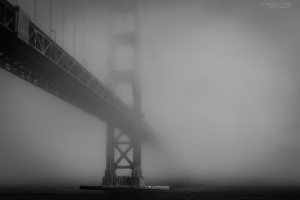 """Fogust"" in San Francisco"