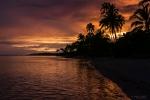 Nature Photography, Hawaii, Beach, Close-Up, Ocean,