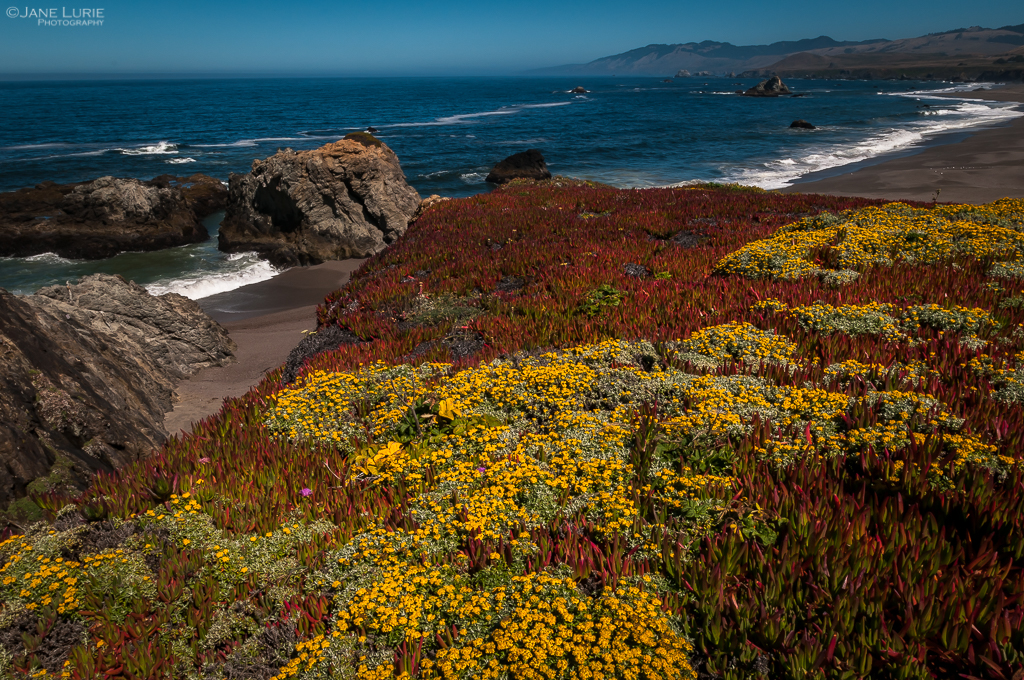 Earth Day, Landscape Photography, National Parks, Nature, Wildlife, Photography, Conservation, Environment,