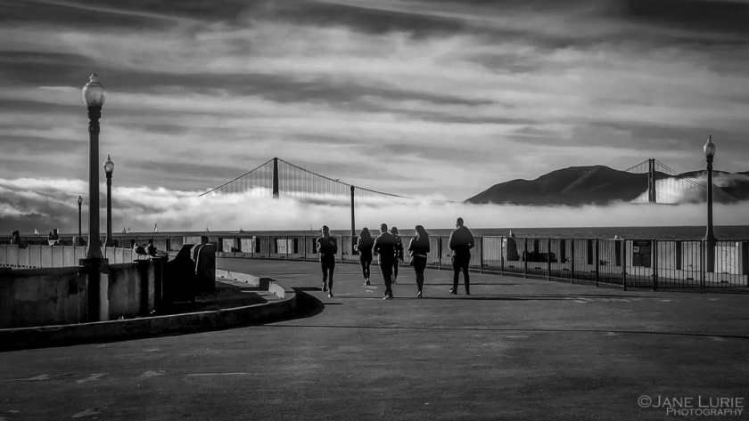 Fog and Pier