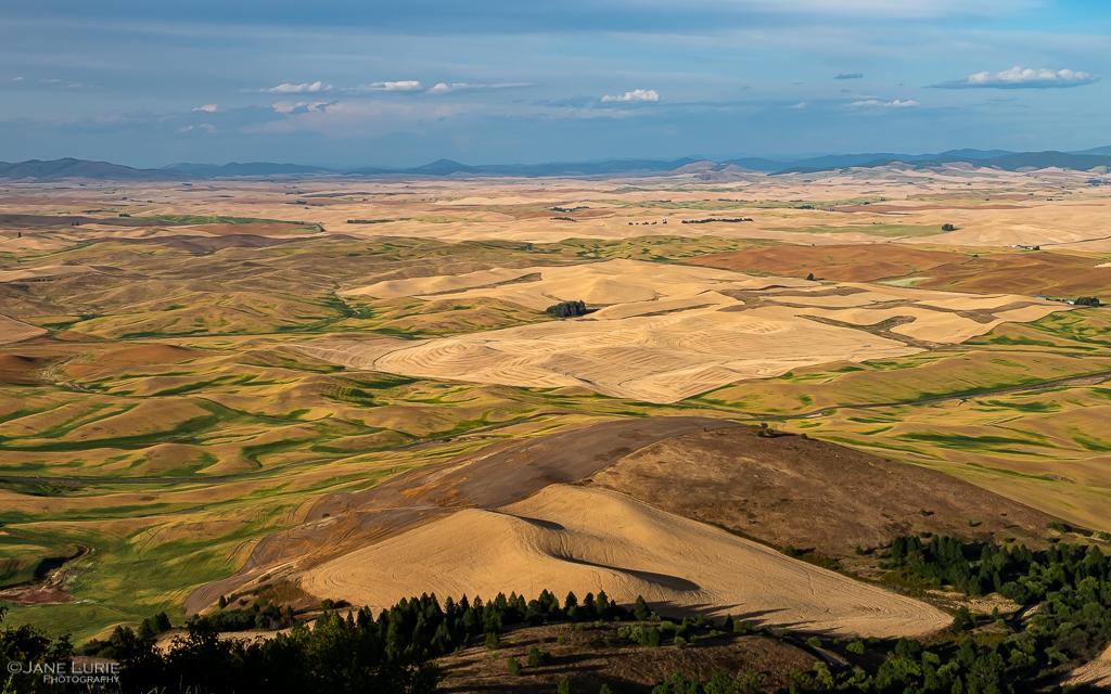 Palouse, Photography, Fujifilm X-T2, Nature, Farming, Washington,