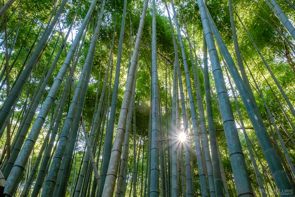 Landscape, Photography, Nature, Fujifilm X-T2, Nikon, Travel