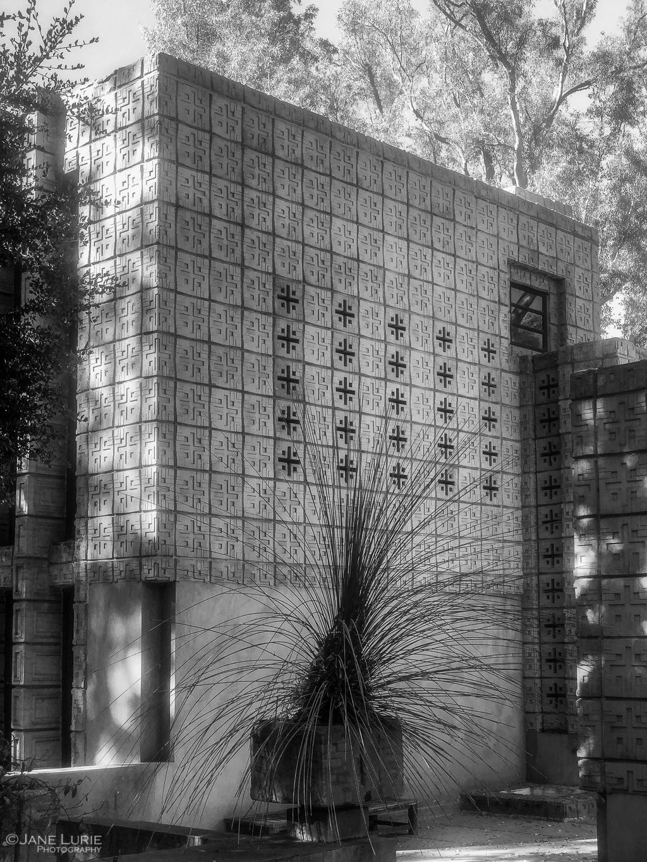 Our Walking Year: Part Two –Pasadena
