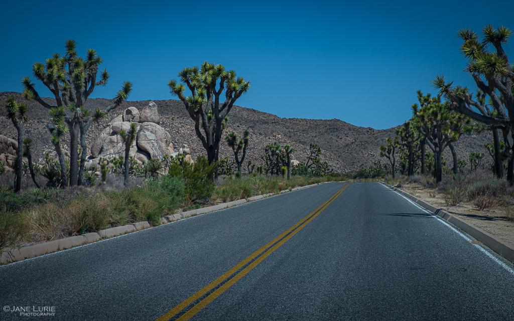 Joshua Tree, Landscape Photography, National Park, Fujifilm X-T2, Nature, Rock Formations, Environment,