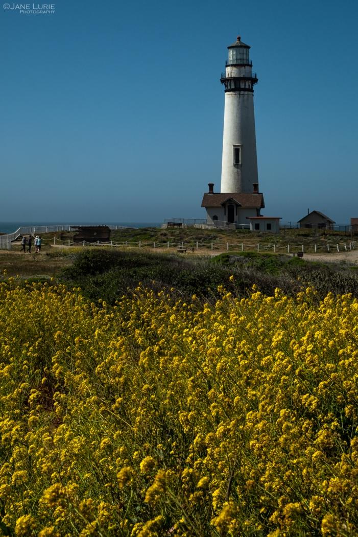 Landscape Photography, Nature, California Coast, Fujifilm X-T2, San Francisco, Big Sur